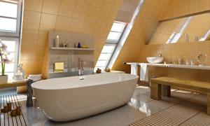 阁楼卫生间浴室的内景陈设高清图片