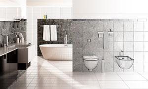 洗手间浴缸与卫浴设施渲染效果图片