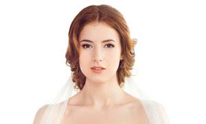 披头纱的幸福新娘人物摄影高清图片