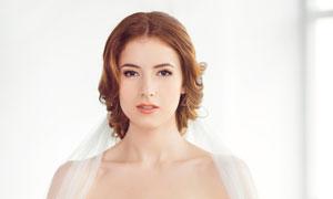 身披着头纱的抹胸婚纱美女高清图片