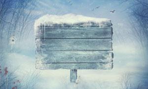 树丛与落满积雪的木牌摄影高清图片