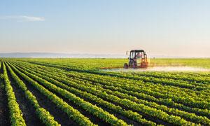 对庄稼喷洒农药的机械摄影高清图片