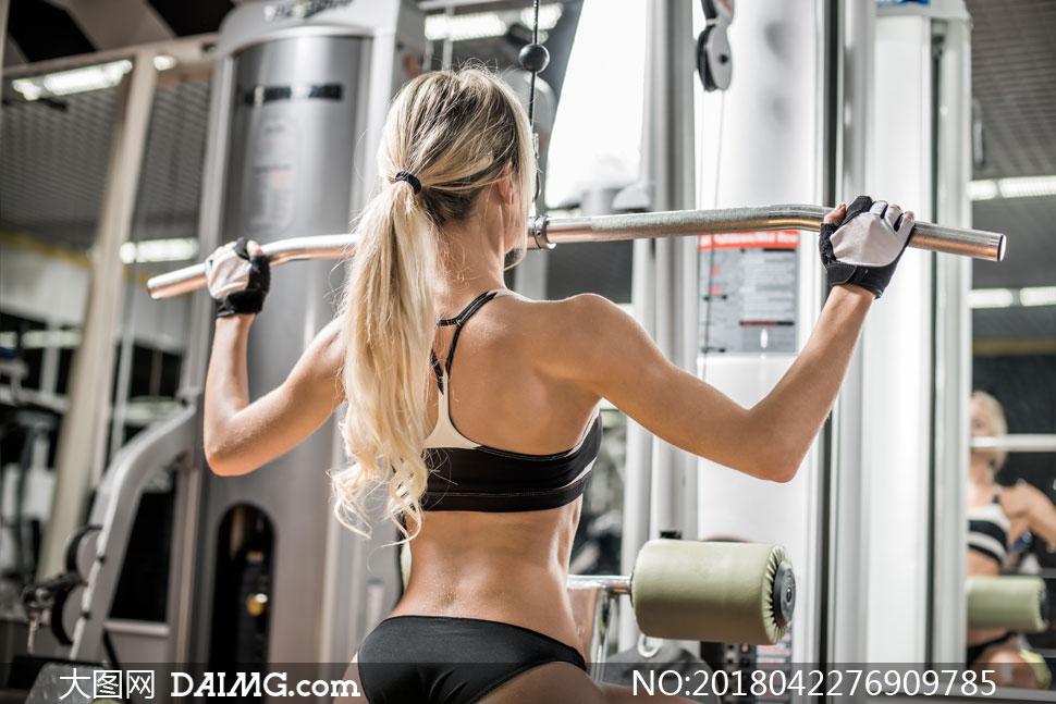 健身器材上干美女_美女女人女性写真模特肌肉力量器材器械健身房文胸内衣马尾发金发背后
