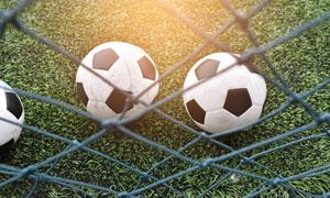 在足球场草地上的足球摄影高清图片