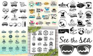 冲浪运动与夏日风情等标签矢量素材