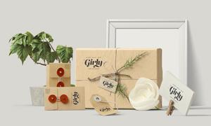 花朵盆栽与纸包装盒等贴图模板文件