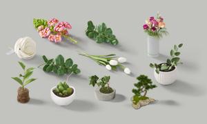 郁金香玫瑰花與綠葉植物等分層素材