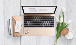 鲜花乳液与笔记本电脑贴图模板文件