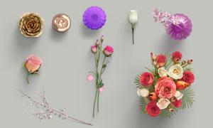 頂視角度的玫瑰等花朵PSD分層素材
