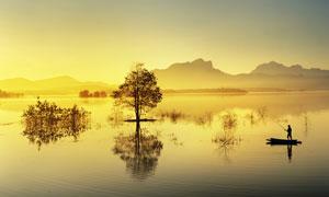湖上树木与隐约可见的山峦高清图片