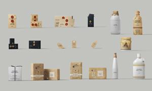 牛皮纸的文件袋包装盒贴图模板素材