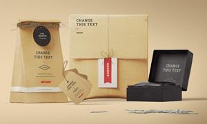 牛皮纸包装效果应用展示贴图源文件