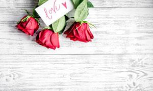 卡片与红色玫瑰花特写摄影高清图片