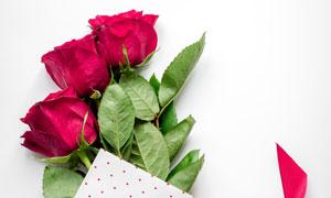 用丝带包装的玫瑰花束摄影高清图片