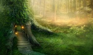 树林里的树屋与青青草创意高清图片