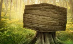 青青草丛环绕着的树墩木牌创意图片