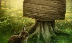 树墩木牌与草地上的小兔子创意图片