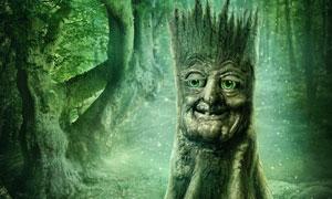 树林中的人面树木创意设计高清图片