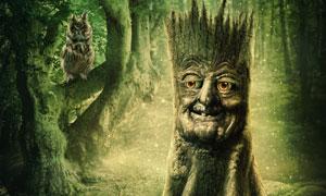 树林中的猫头鹰与人面树木创意图片