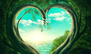 透过心形树藤看到的云朵等创意图片