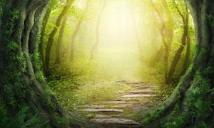 在月亮门外的树林小路创意高清图片