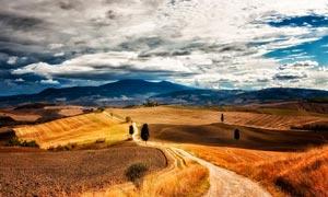 秋季田园农田和小路风光摄影图片