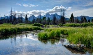 山脚下水边水草自然景观摄影图片