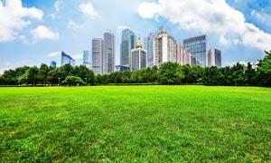城市中公园绿色草地摄影图片