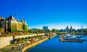 加拿大海边码头景观摄影图片