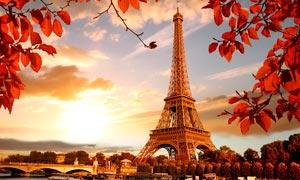 秋季唯美的埃菲尔铁塔摄影图片