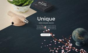 鲜花树枝与植物等元素网页适用素材
