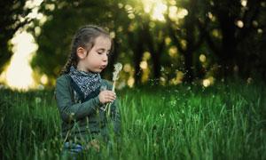 吹散蒲公英的儿童人物摄影高清图片