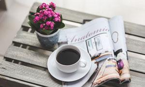 杂志咖啡杯与长寿花等特写高清图片
