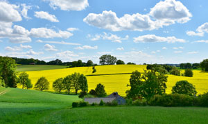 天空云朵与农场庄稼地风光五百万彩票图片
