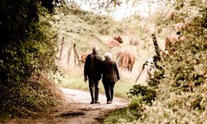 走在鄉間小路上的老人攝影高清圖片