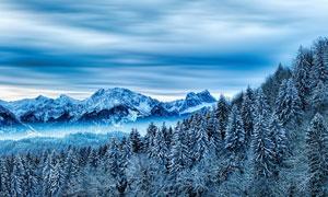 高寒地区雪山树林风景摄影高清图片