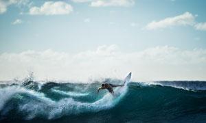 浪尖上冲浪的运动人物摄影高清图片