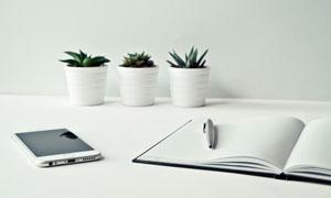 手机记事本与盆栽植物摄影高清图片