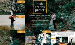 外景婚礼照片绿色清新主题效果LR预设