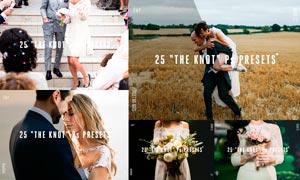 婚礼随拍照片暖色艺术效果ACR预设