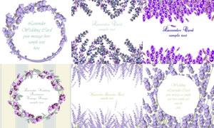 薰衣草装饰的浪漫边框创意矢量素材