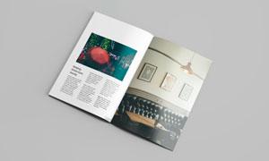 画册两个页面透视效果贴图分层模板