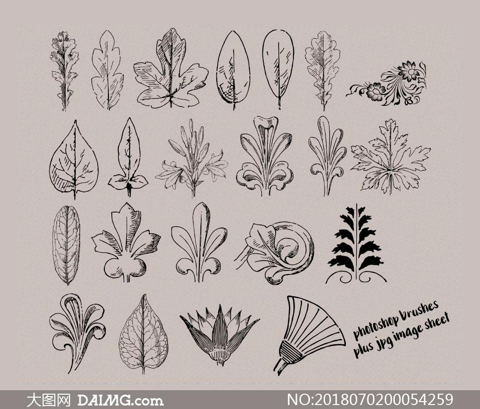 手绘花纹和植物叶子ps笔刷 - 大图网设计素材下载