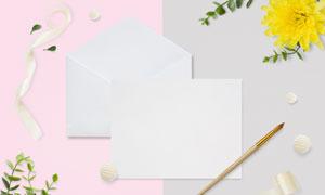 缎带菊花与卡片画笔等PSD分层素材