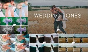 40款婚礼照片欧美主题效果LR预设