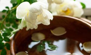 落在木碗里的白色花瓣摄影高清图片