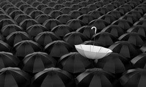 伞堆中的白色雨伞创意设计高清图片