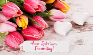 桌上粉嫩的郁金香鲜花摄影高清图片