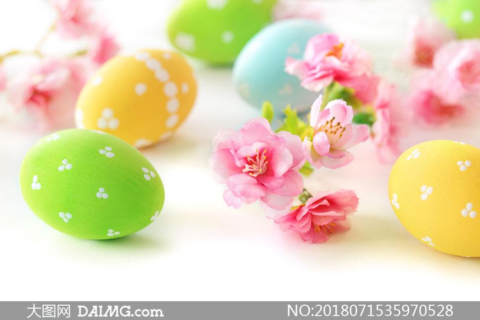 彩蛋与树枝上的花朵等摄影高清图片