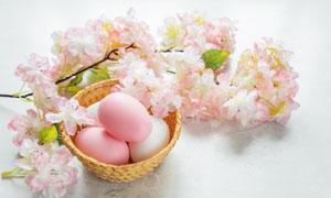 粉色花朵与复活节彩蛋摄影高清图片